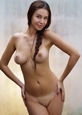 Perfect Set Of Tits