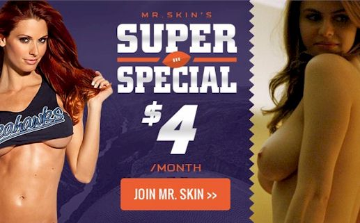 Super Special from Mr. Skin to Celebrate Super Bowl!